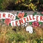 Fête de Printemps du quartier libre des Lentillères