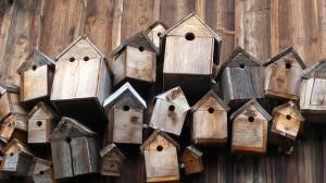 Talant – Atelier de construction de nichoirs