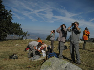 Flavignerot – Sortie d'initiation aux chants d'oiseaux des pelouses et forêts