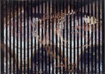 collage-kolar-2