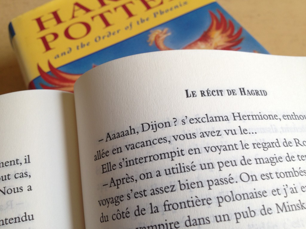 "Dans ""Le Récit de Hagrid"", on apprend l'enthousiasme d'Hermione à la simple évocation du nom de Dijon. Photo © BC - Jondi"