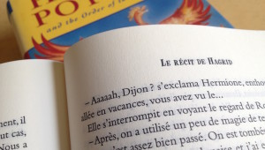 Pourquoi JK Rowling cite Dijon dans Harry Potter