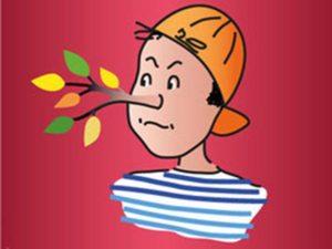 Spectacle – «Pinocchio»