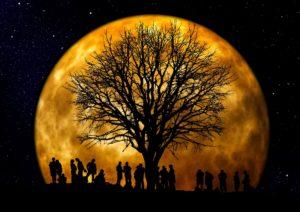 Nocturne du mois d'octobre
