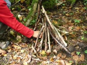 Chenôve – Les mystères de la Forêt