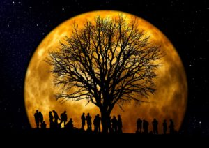 Jeux – La Nocturne du mois d'août