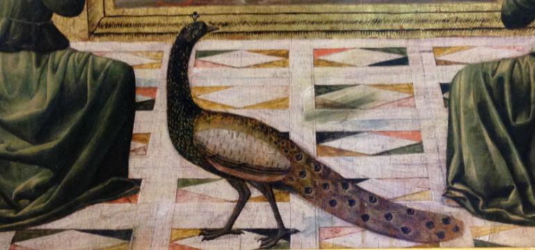 ramage-plumage-mba