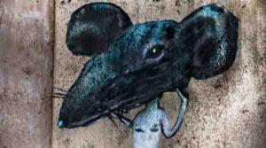 Spectacle – «Le Roi des rats»