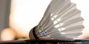 Journée portes-ouvertes Badminton Club Dijonnais