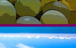 Exposition – «La jolie vigne» et «Joie d'vie»