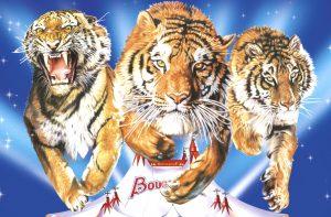 Cirque Bouglione «On Tour»