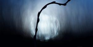 Vernissage de l'expo «Entre ombres et couleurs»