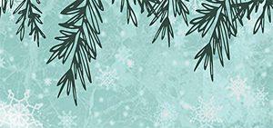 Spectacle «Noël, le festival de l'hiver»