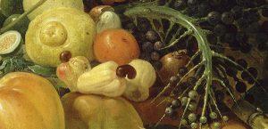 Visite commentée de l'exposition «Les Fruits du Nouveau Monde»