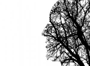 Journée de partage : «Éveillons nos sens»