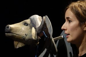 Spectacle – «Buffles»