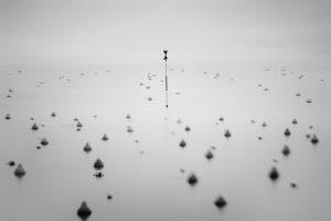 Exposition – Thibault Roland «Mirages»