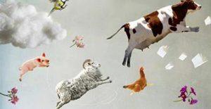 Projection-rencontre – «Un village dans le vent»