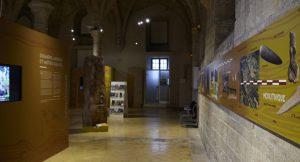 Visites de l'expo «Bourgogne Franche-Comté, terre de Préhistoire»