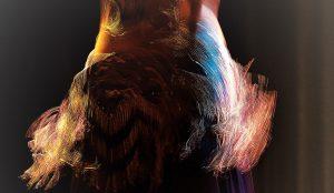 Les Nuits d'Orient – Spectacle «Danse orientale au pluriel»