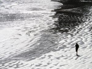 Exposition de photographies de Élise Colombel