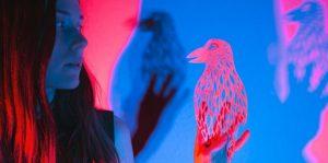 Conte musical et visuel – Echoes, par Ladylike Lily