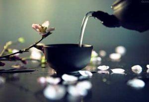 Initiation aux thés chinois