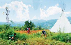 Ciné-débat  «Permaculture, la voie de l'autonomie»