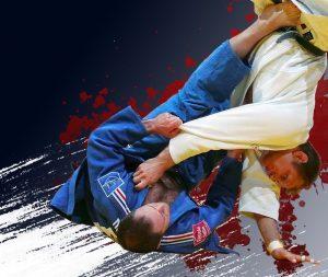 Fête du Judo 2019