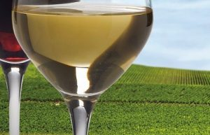 8e Salon des vignerons indépendants