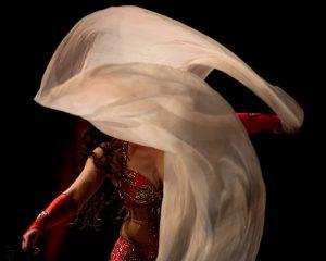 Festival des Nuits d'Orient – Spectacle de danse orientale