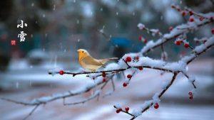 Lecture de contes d'hiver