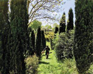 Exposition – «Parcs et jardins en gestion écologique»