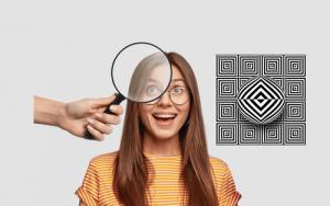 Fête de la Science – Comprendre notre cerveau visuel grâce aux illusions – Conférence participative